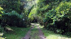 monteazul-chimirol-rivas-002.jpg