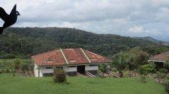 mountain-hotel-monteverde-000.jpg