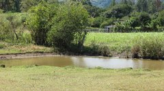 cachi-lake-cartago-07.jpg