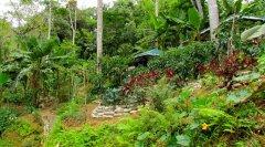 osa-sustainable-village-for-sale-b.jpg