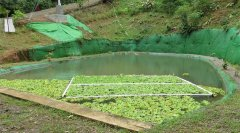 osa-sustainable-village-for-sale-l.jpg