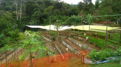 osa-sustainable-village-for-sale-p.jpg