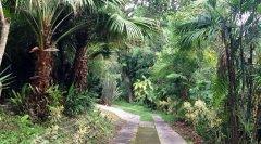 Villa-Bougainvillea-00.jpg