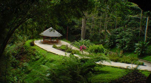 Pura Vida Gardens
